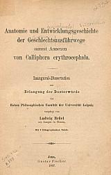 Anatomie und entwicklungsgeschichte der geschlechtsausführwege sammt annexen von Calliphora erythrocephala.1897