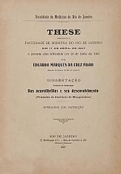Das neurofibrillas e seu desenvolvimento. 1907