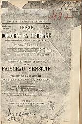 Recherches anatomiques et cliniques sur le faisceau sensitif et les troubles de la sensibilité dans les lésions du cerveau.1881