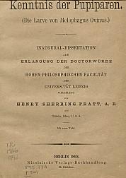 Beiträge zur kenntnis der pupiparen.1893