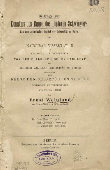 Beitrage zur kenntnis des baues des dipteren-schwingers.1890