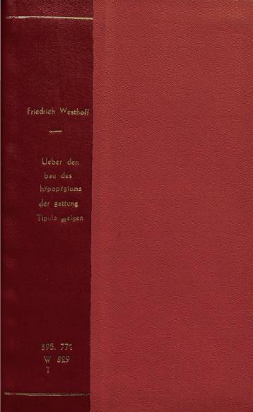 Ueber den bau des hypopygiums der gattung tipula meigen. 1882
