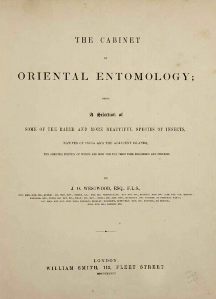 The Cabinet of oriental entomology.1848